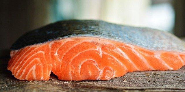 łosoś filet ryba